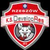 Developres-SkyRes-Rzeszow-logotyp
